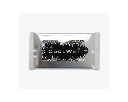 冷感クールウェットティッシュ〔10枚入り〕既製品